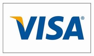Individual Logo Placard (Visa)